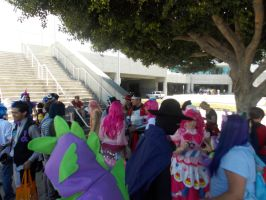 AX2014 - MLP Gathering: 57 (LAST) by ARp-Photography