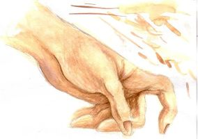 Hand in Watercolor by Hermionina