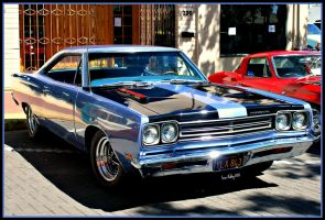 Roadrunner by StallionDesigns