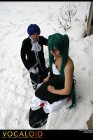 Vocaloid-Cantarella:Pure by wtfproductionsskits
