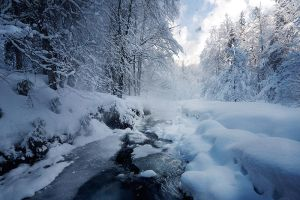 Winter Delight _ by alexandre-deschaumes