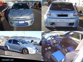 Peugeot 206 1.6 xs tuning by waste84