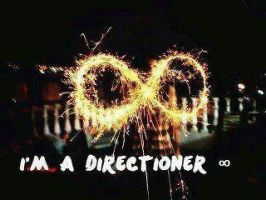 Im A Directioner by OneDirection10