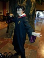 Colossalcon 2012- Harry Potter by 22123