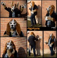 Freckles the Basset Hound by ScardyKat