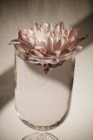 Old-style Flower in a Glass by drr104