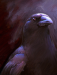 Crow 01 by coreyh2