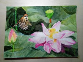 15.04.15 Lotus And Sparrow by Lunabow