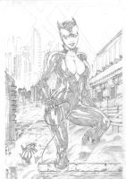 Catwoman by CaioMarcus-ART