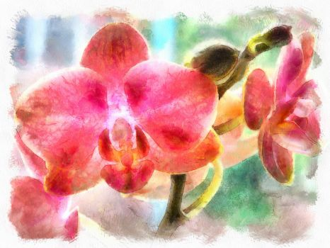 Painted Orchid by flowerintheattic41