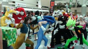Tail, Knux, Sonic, Shads, Rouge, Eggman, Finitevus by trivto