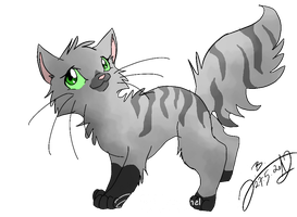Gray Cat ART-TRADE by JB-Pawstep