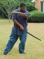 Samurai Kevin Dual Swords 15 by themuseslibrary