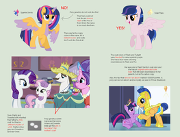 TUTORIAL: How to Make a Shipping Pony (correctly) by nerdponies