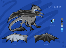 Polaris reference sheet by h0wr