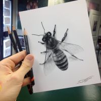 Quick Bee Sketch by AtomiccircuS