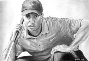 Tiger Woods by marmicminipark