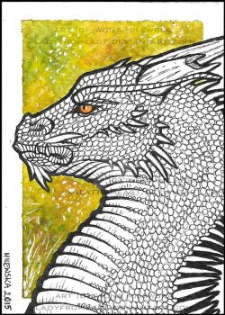 ACEO Yggnis by LadyFromEast