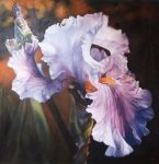 IRIS -40x40 inch Oil Painting by AstridBruning