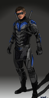 TNT Titans Concept: Nightwing by IronAvenger1234