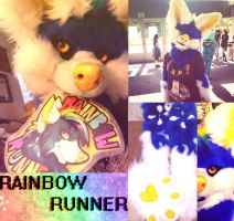Rainbow Runner | Partial Suit by Ice-Neko890