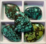Turquoise Cabochons by Undistilled