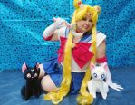 Sailor Moon and Moon Cats by renataeternal