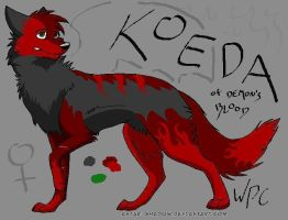Koeda Ref {Out of Date} by WolfPawCreator