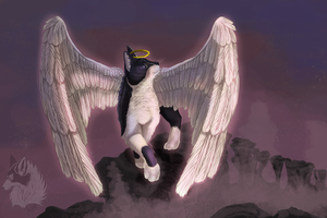 Sookie Angel by OriginalDragonLord
