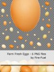 Farm Fresh Eggs - Isolated PNGs by Fire-Fuel