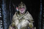 Faendal elven armor close by swept-wing-racer