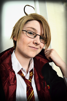 Alfred the Gryffindork by SandLionCurse