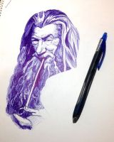 Gandalf by HipsterAnt