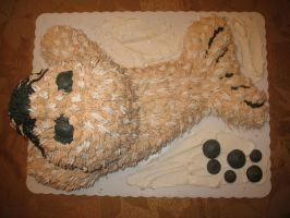 Baby Seal Cake 3 by TheShiftyAdvisor