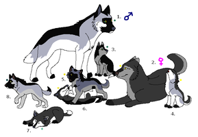 Wolf Adoptables 18: CLOSED by Manic10974