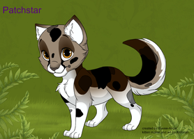 Patchstar -kitten maker- by insanityNothing