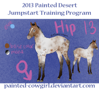2013 Jumpstart Program Hip 13 by painted-cowgirl
