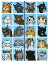 Kitty Faces by Expression