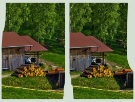 Wooden Shed HDR X-3D by zour