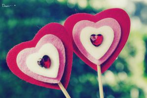 TWO HEART by DREAM-PHOTOGRAFY