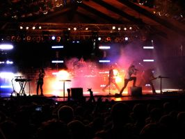 Skillet at Ichthus 2009 by AndromedaRoach
