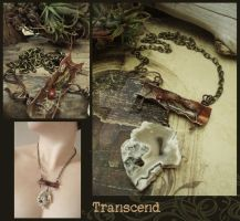 Transcend by luthien27