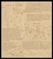 Vaix: Breedsheet pg 2 by Everland-Stables