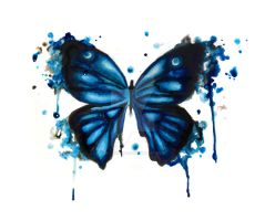 Butterfly by jacqui-kate