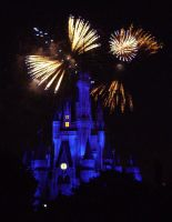 Cinderellas Castle at Night:19 by CanisCamera