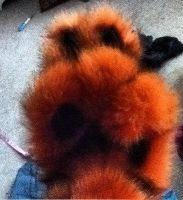 Black tipped rust colored Hand Paws by DressedAllInFurWorks