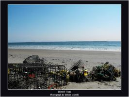 Lobster Traps by ScaperDeage