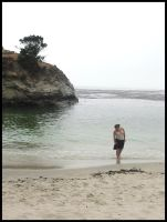 China Cove at Pt. Lobos - 1 by venusflesh