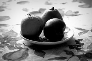 Still Life by tortagel