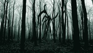 Slender Man by Michael-Driver